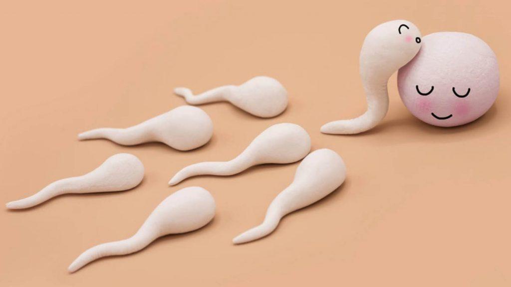 7 نکته برای سلامت اسپرم