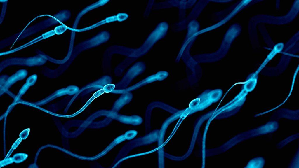 آزمایش اسپرم