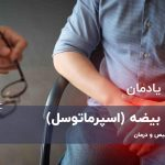 کیست بیضه (اسپرماتوسل) در مردان + تشخیص و درمان