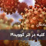 ویروس کرونا : آسیب کلیه در اثر کووید 19